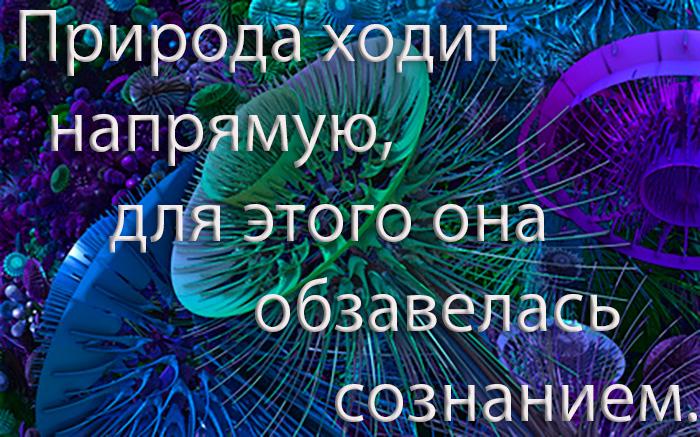 ПРиРОД А=