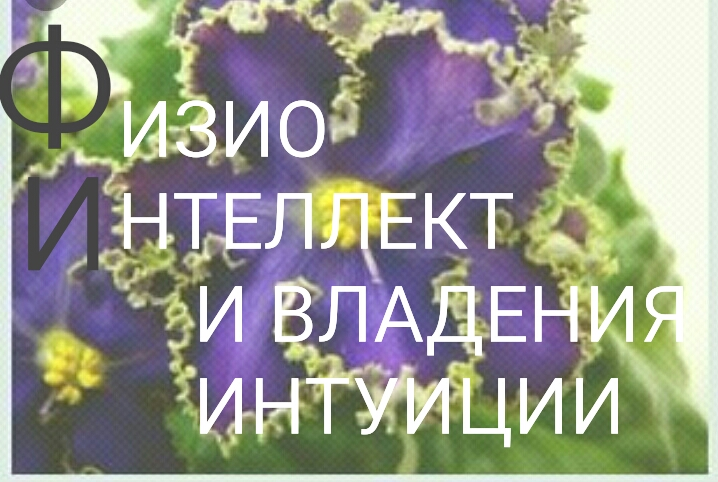 S80525-103858(1)